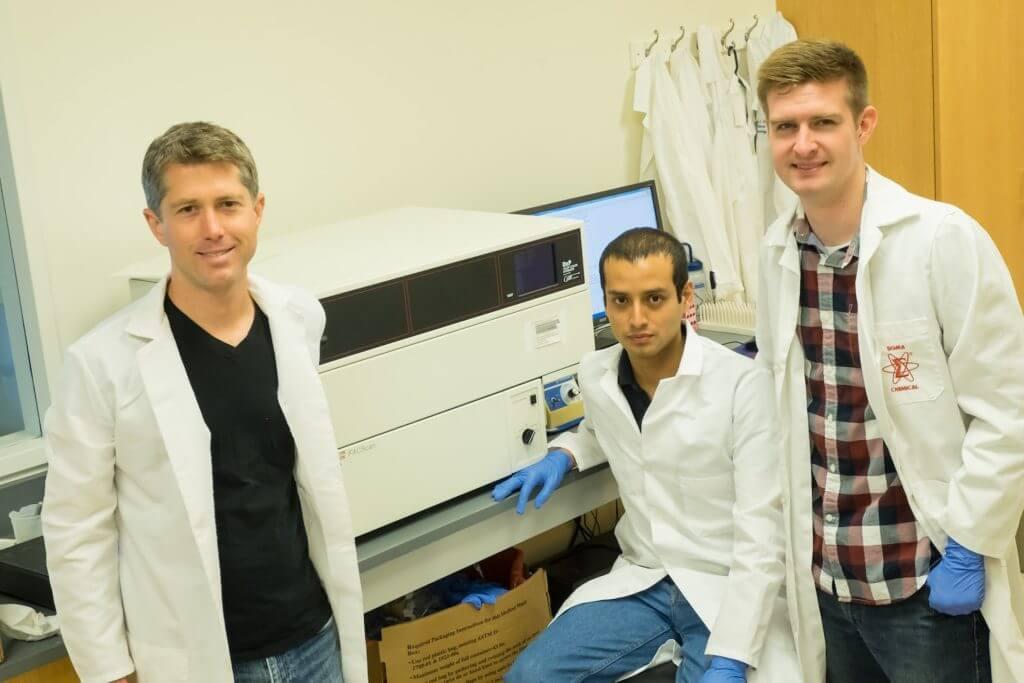 From left: Jeffrey Tabor, an assistant professor of bioengineering, and graduate students Sebastián Castillo-Hair and John Sexton.