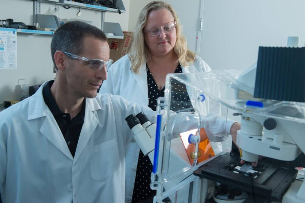 Rice University graduate student Dan Puperi and bioengineer Jane Grande-Allen test a sample in her lab at Rice's BioScience Research Collaborative. They led a study to evaluate the use of the natural polymer hyaluronan as a template for growing spongiosa tissue for replacement heart valves.