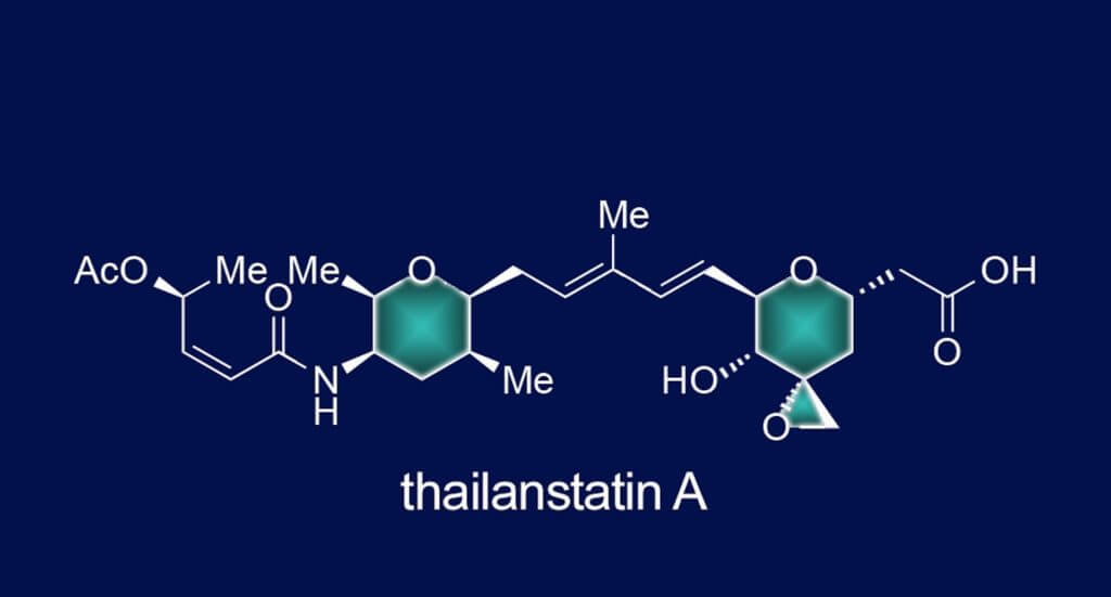 A schematic shows the synthesized anti-cancer agent Thailanstatin A. The Rice University lab of synthetic chemist K.C. Nicolaou has synthesized the molecule found in bacteria native to Thailand.