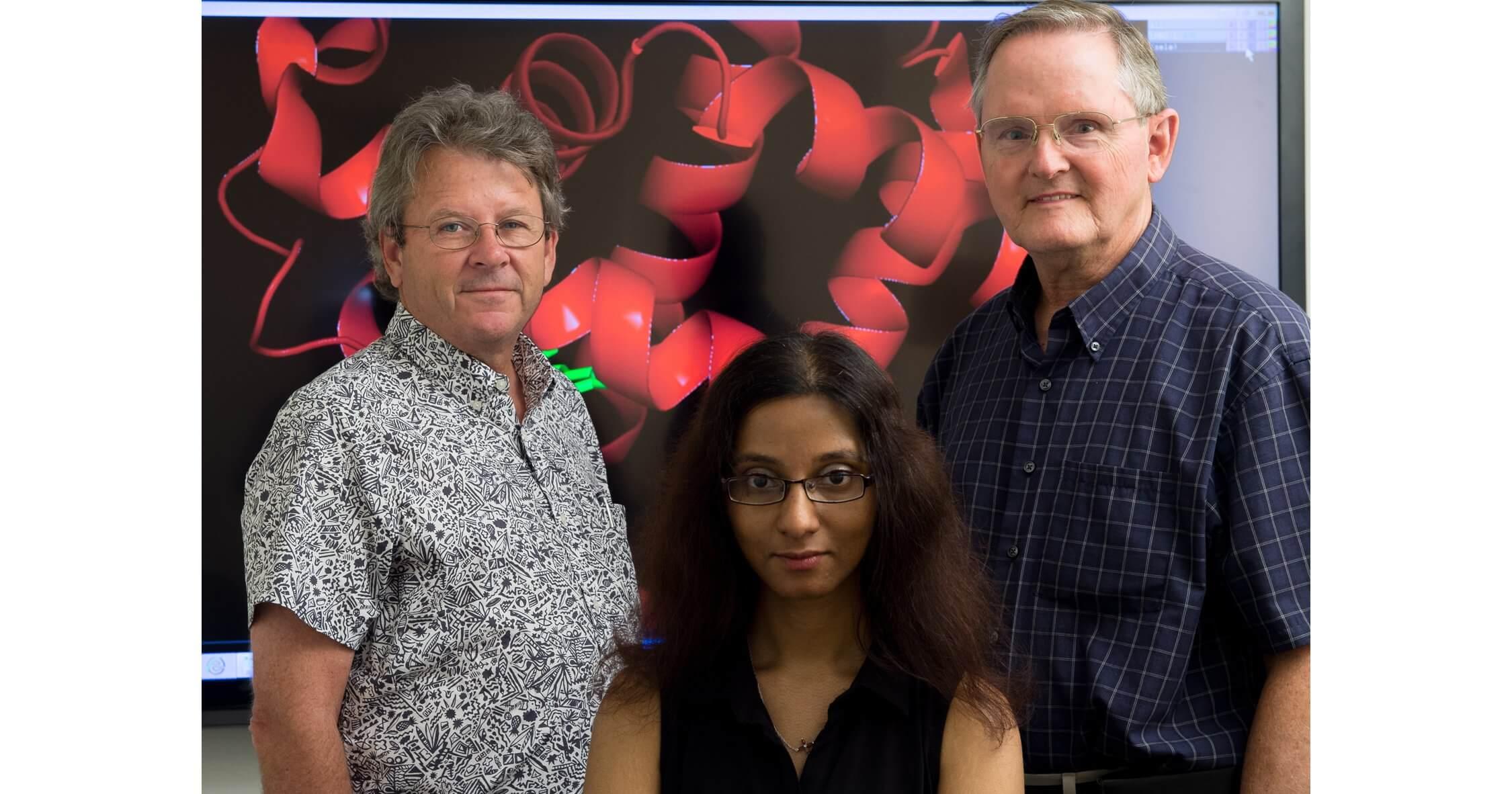 Rice biochemists George Phillips (left), Premila Samuel (center) and John Olson (right). (Rice University)