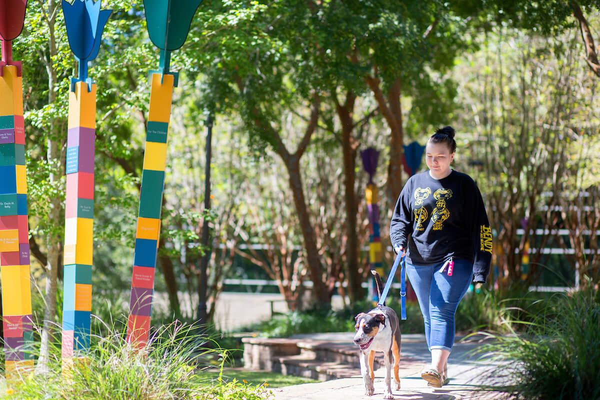 Alyssa Carter walks Cooper, a hound mix.