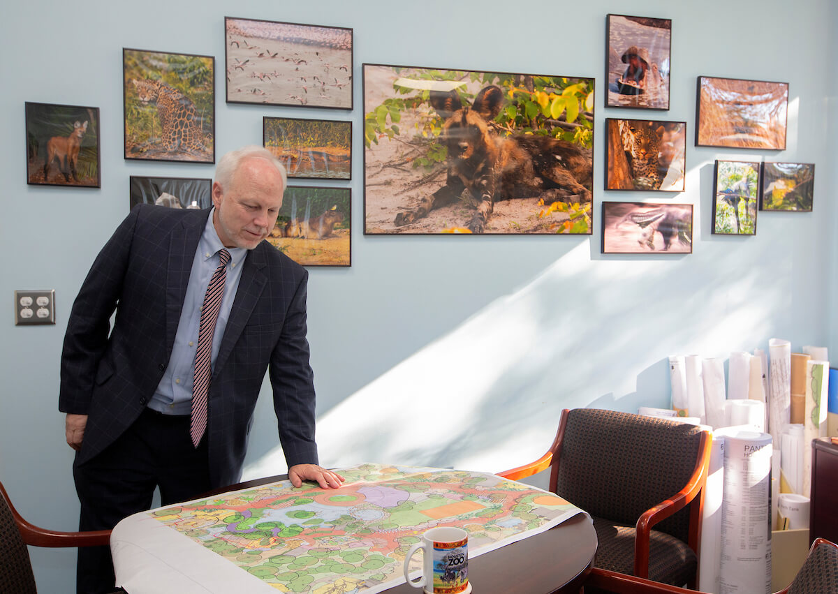 Ehmke reviews plans for the zoo's new exhibits. By 2022, half the park will be redeveloped. (Photo by Cody Duty/Texas Medical Center)