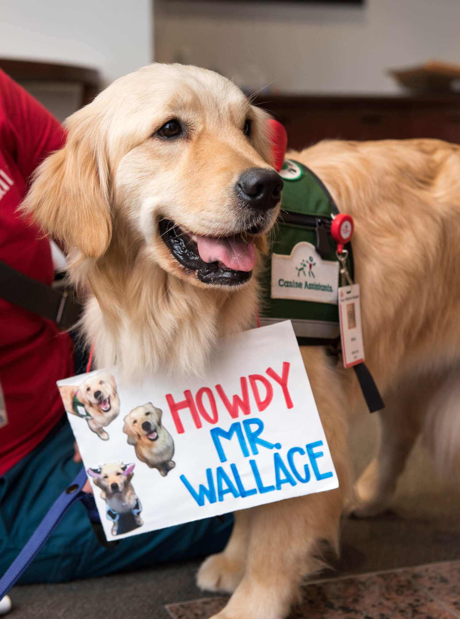 Bailey, Texas Children's second therapy dog, prepares to meet Mark A. Wallace, president and CEO of Texas Children's, for the first time. Photo: Allen S. Kramer/Texas Children's Hospital