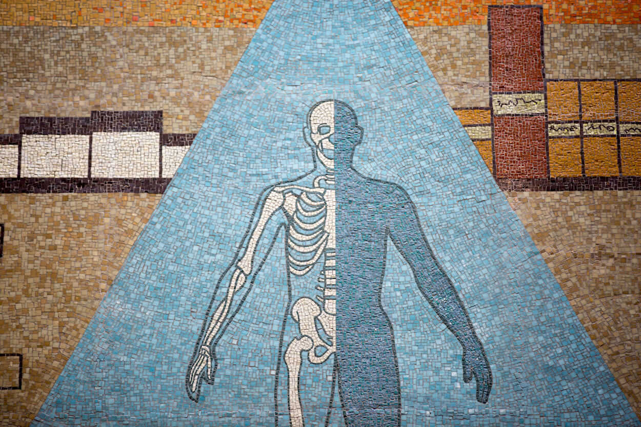 The mosaic also depicts the evolving  understanding of the human body.