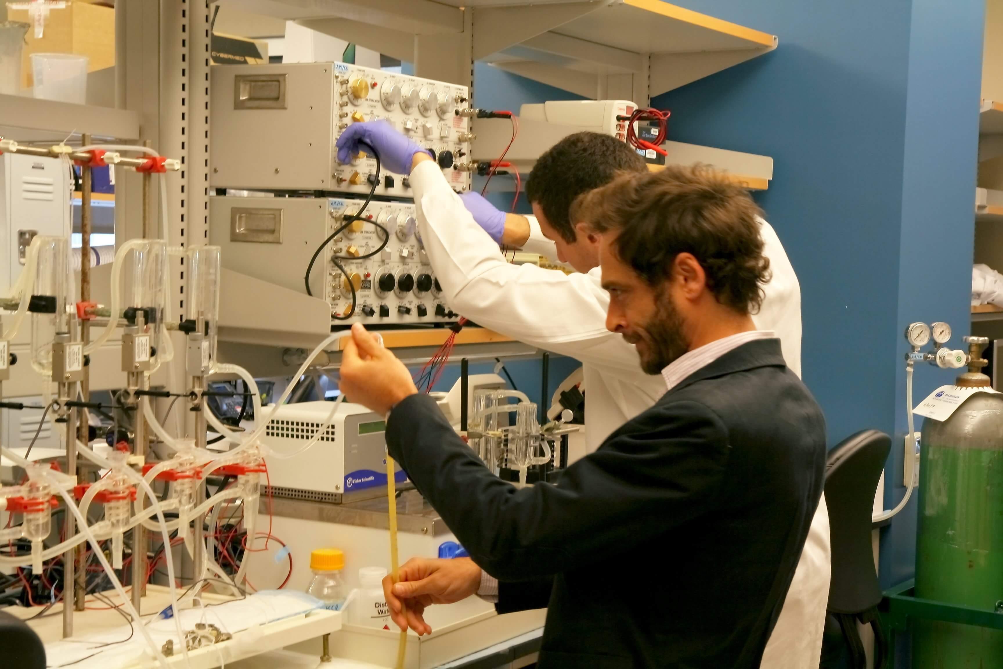 Dr-Tasciotti01