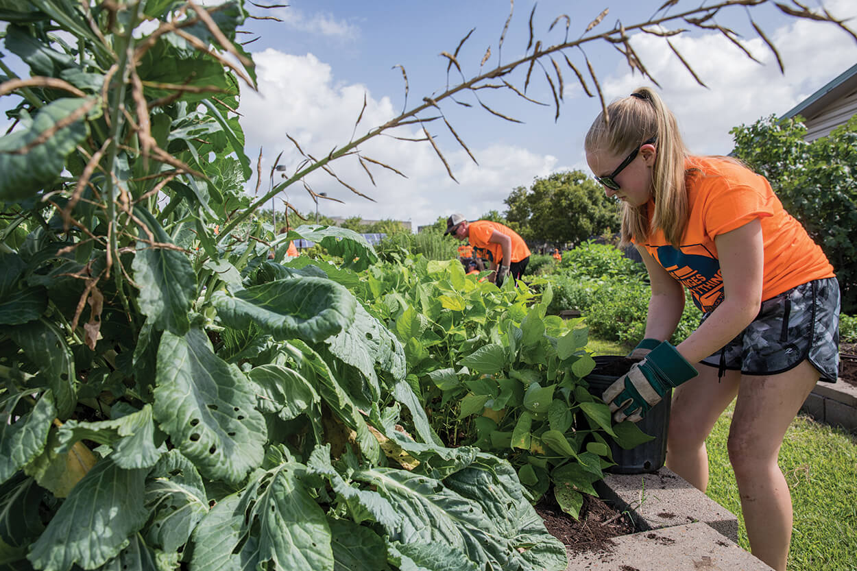 A volunteer at the Evangelical Lutheran Church in America's Youth Gathering adds a top dressing to the raised beds of a community garden outside the Houston Health Department's Southwest Multi-Service Center. (Photo by Scott Dalton)
