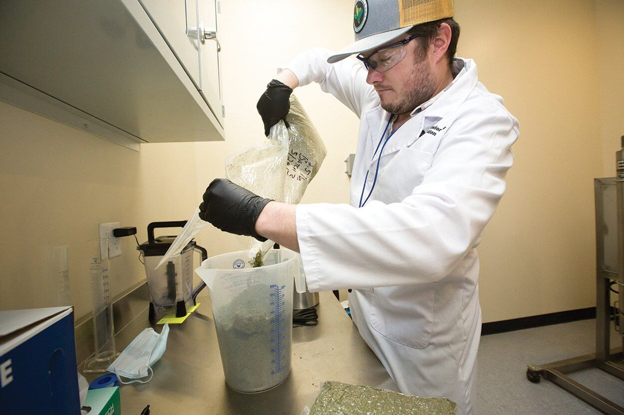 Extracting Cannabidiol Oil: Chris Woods, director of process, extraction, and testing at Xabis, uses a machine to extract pure plant oil from cannabis. The machine uses a carbon dioxide (CO2) extraction process in a closed-loop system to recapture more than 90 percent of the CO2 used. After extraction, several steps including purification, distillation and chromatography will yield oil with cannabinoid purities as high as 99 percent. (1 of 4)