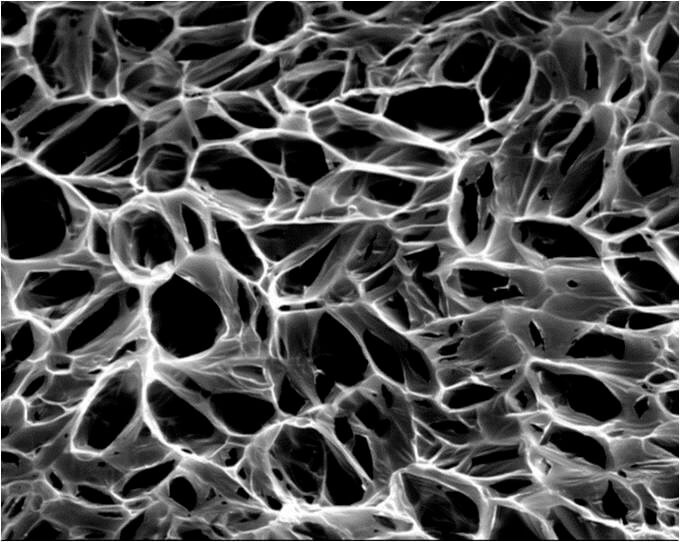 A scanning electron microscope image of a pediatric heart patch. (Credit: Jacot Lab/Rice University)