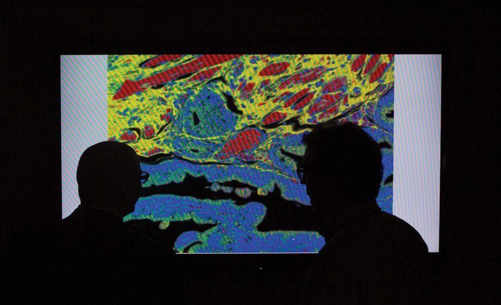 Gustavo Ayala, Michael Ittmann, digital pathology