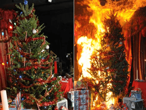 Christmas trees should be watered daily to avoid catching fire.