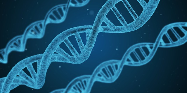 Why You Should Talk To A Genetic Counselor Before Using An At Home Dna Test Tmc News