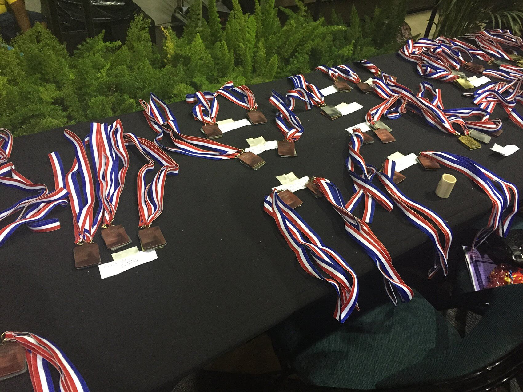 Medals awarded to Street Olympics participants.